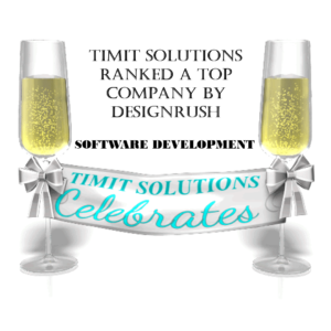 TIMIT SOLUTIONS ranked a Top Software Development Company by DESIGNRUSH